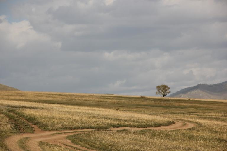 Mongolia 201