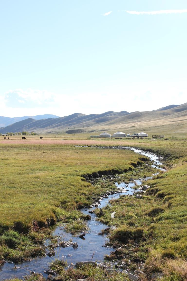 Mongolia 225
